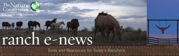 Ranch E-news: Tools and Resources for Today's Ranchers