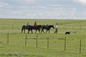 Ranchers - Jack DAllen Kirk